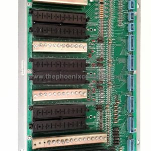DS3800XAIB - THE PHOENIX CONTROLS